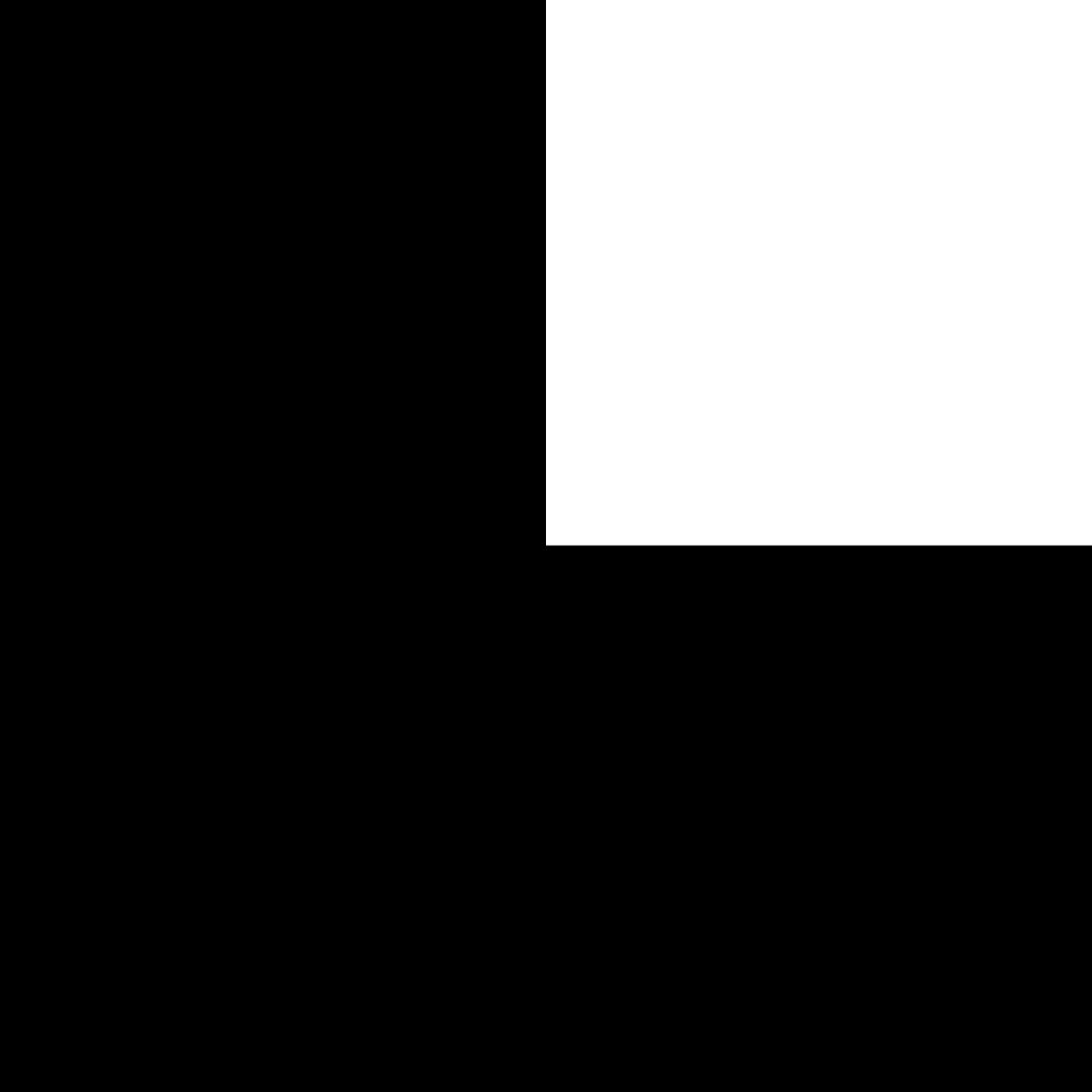CW_FLAG_L